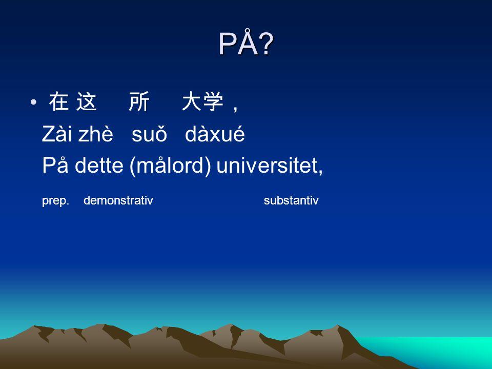 PÅ 在 这 所 大学, Zài zhè suǒ dàxué På dette (målord) universitet,