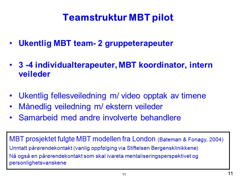 Teamstruktur MBT pilot
