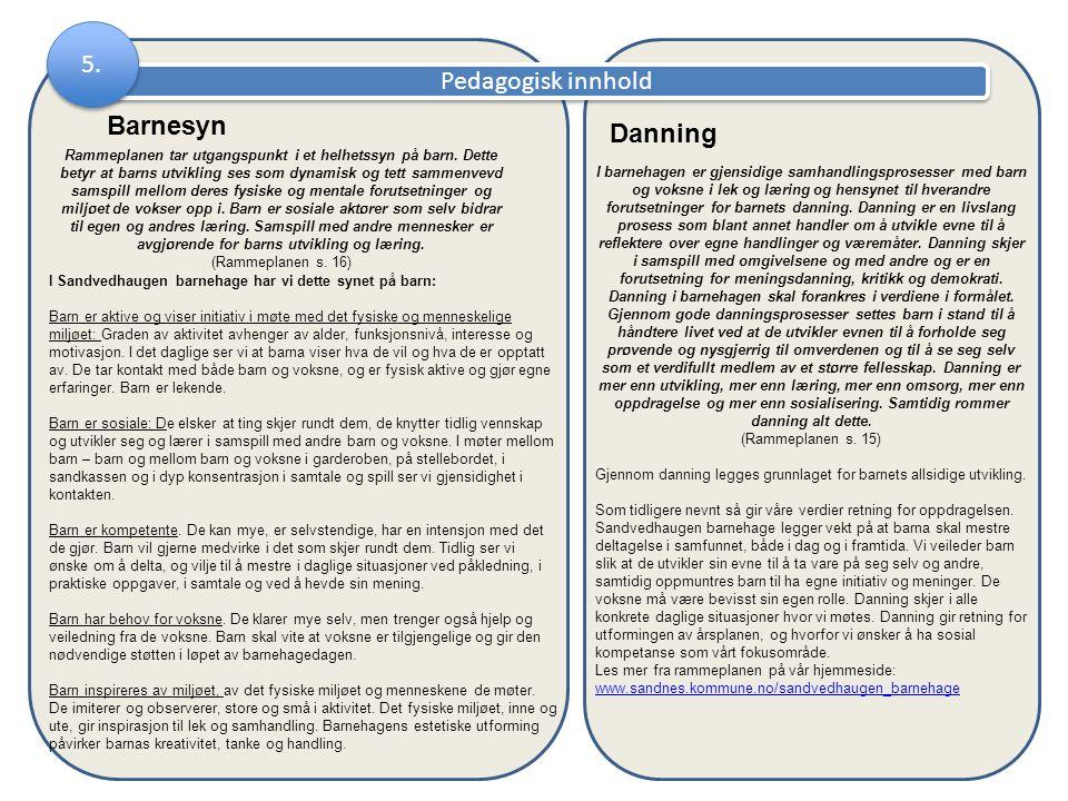 5. Pedagogisk innhold Danning Barnesyn