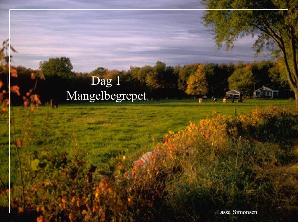 Dag 1 Mangelbegrepet Lasse Simonsen