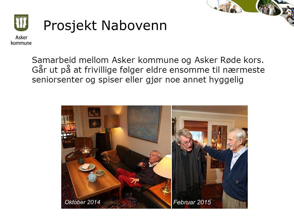 Prosjekt Nabovenn