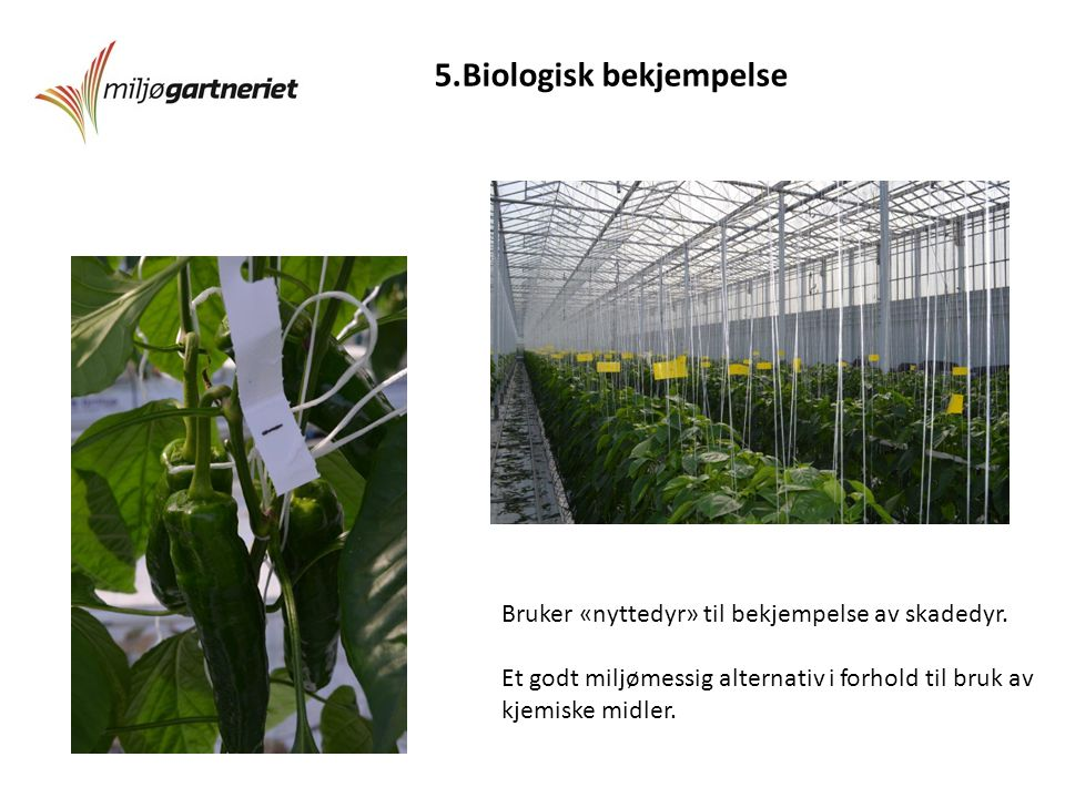 5.Biologisk bekjempelse