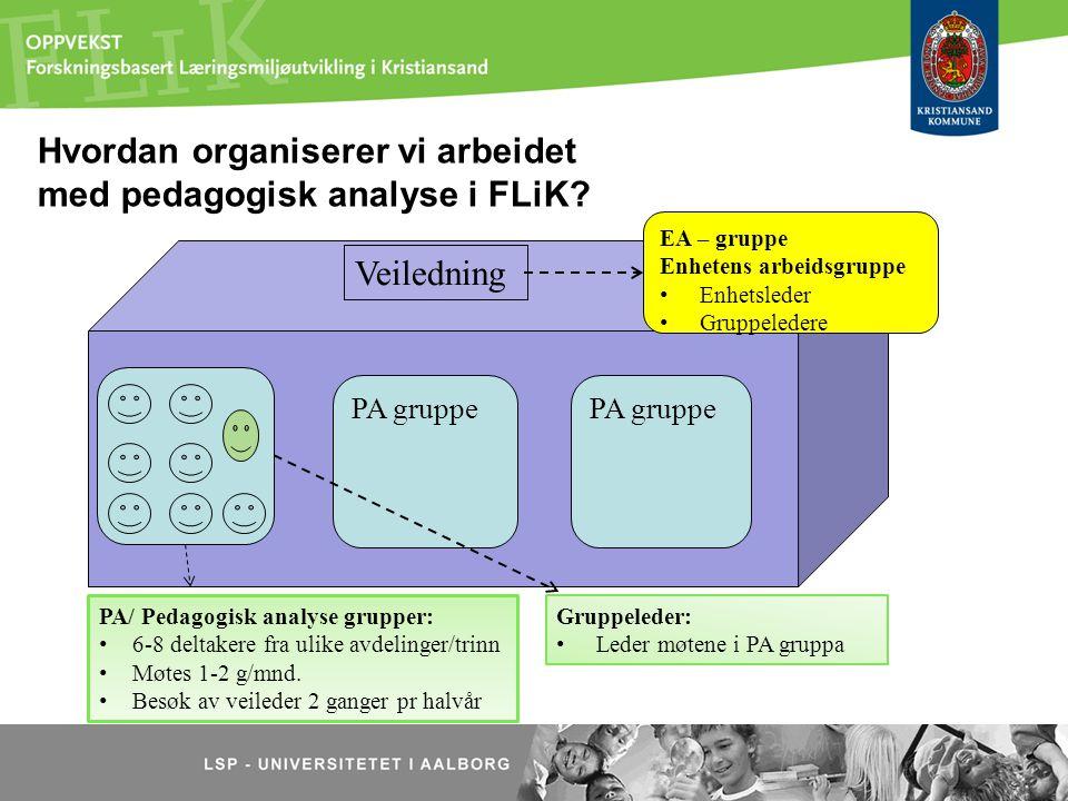 Hvordan organiserer vi arbeidet med pedagogisk analyse i FLiK