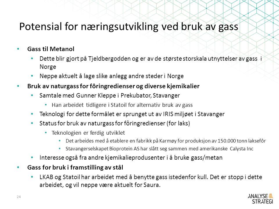 Potensial for næringsutvikling ved bruk av gass