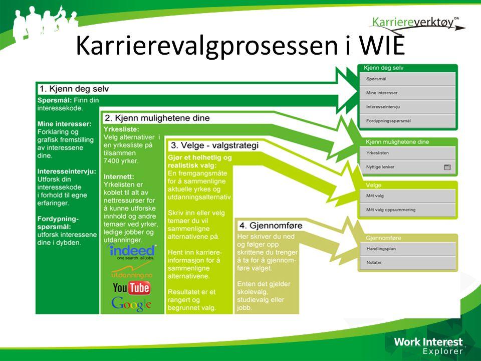 Karrierevalgprosessen i WIE