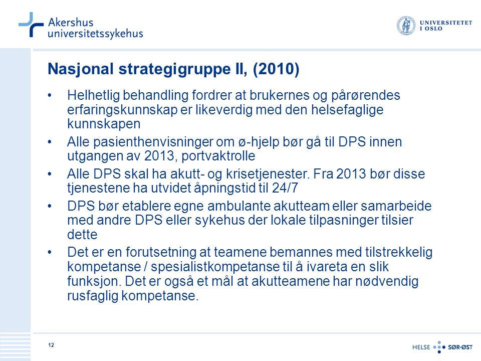 Nasjonal strategigruppe II, (2010)