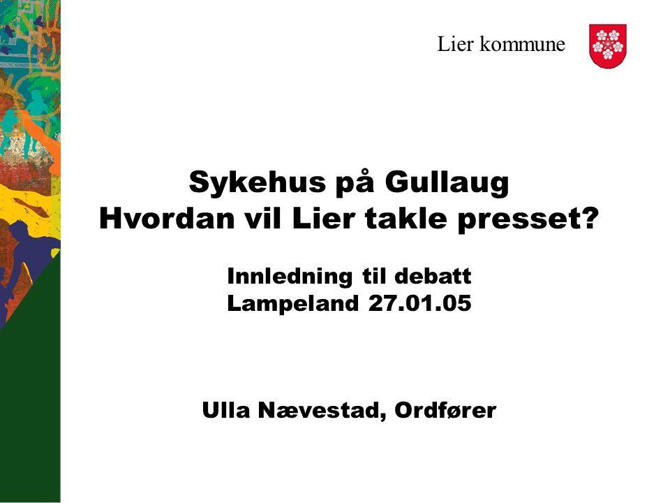 Lier Kommune Sykehus Pa Gullaug Hvordan Vil Lier Takle Presset Innledning Til Debatt Lampeland Ulla Naevestad Ordforer Ppt Laste Ned