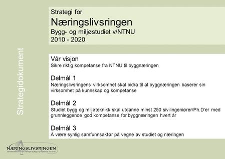 Næringslivsringen Strategidokument Strategi for