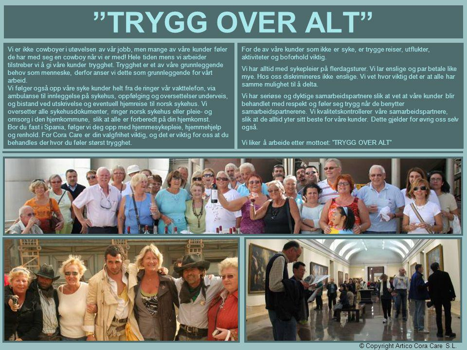 TRYGG OVER ALT