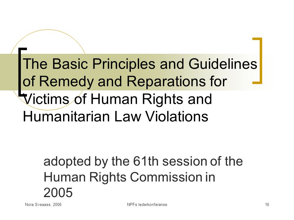 adopted by the 61th session of the Human Rights Commission in 2005
