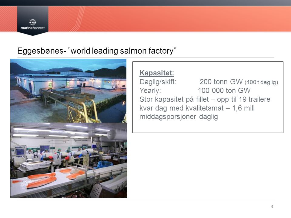 Eggesbønes- world leading salmon factory