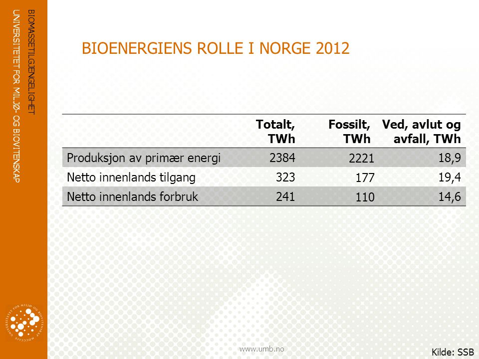 BIOENERGIENS ROLLE I NORGE 2012