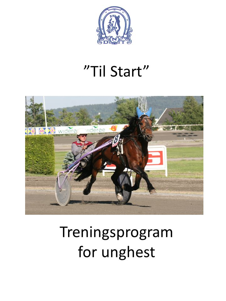 Til Start Treningsprogram for unghest