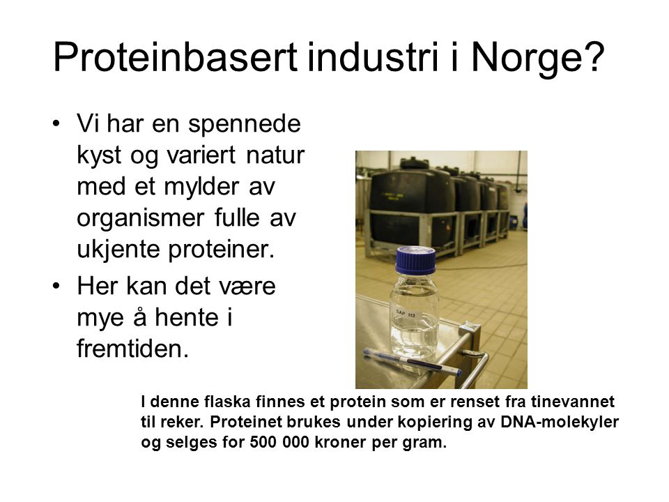 Proteinbasert industri i Norge