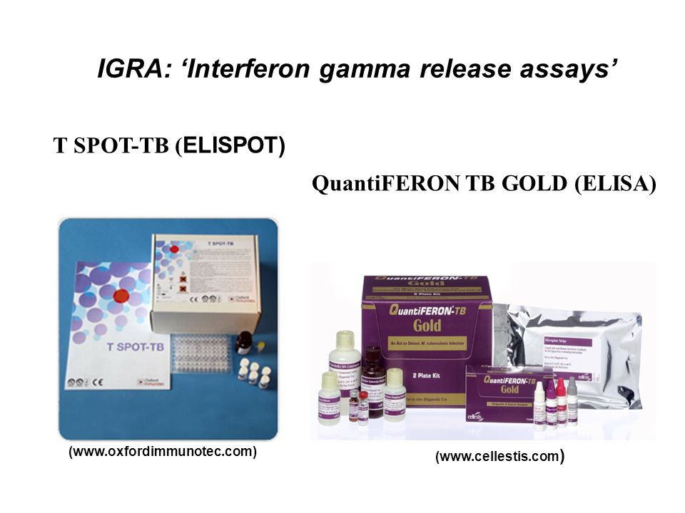 IGRA: 'Interferon gamma release assays'