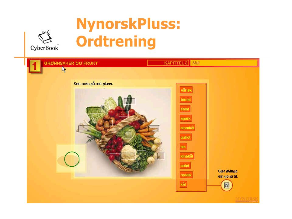 NynorskPluss: Ordtrening