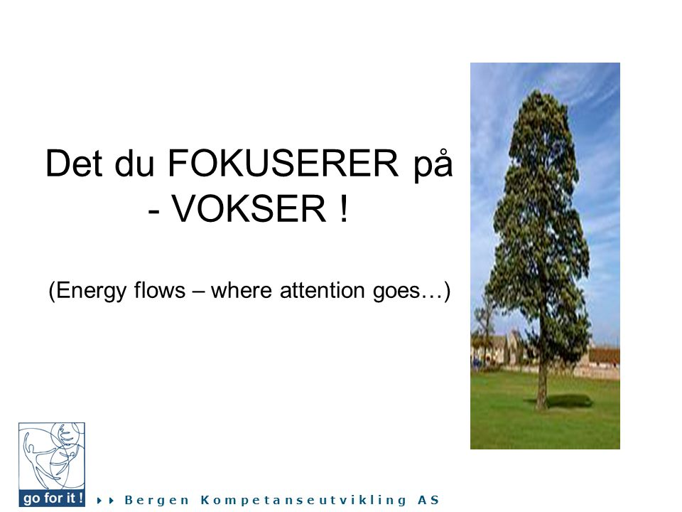 Det du FOKUSERER på - VOKSER ! (Energy flows – where attention goes…)