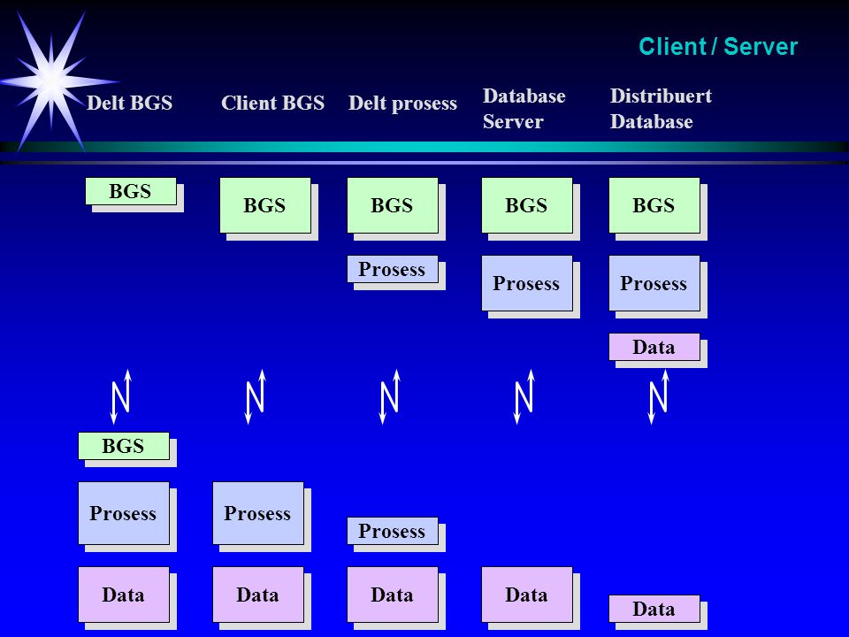 Client / Server Database Server Distribuert Database Delt BGS
