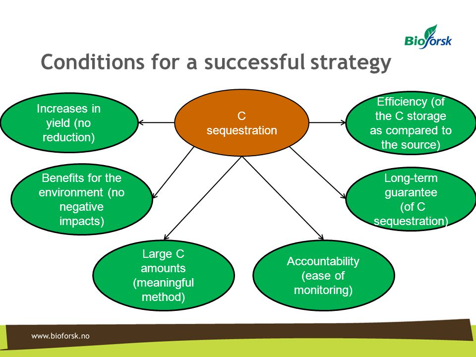 Conditions for a successful strategy
