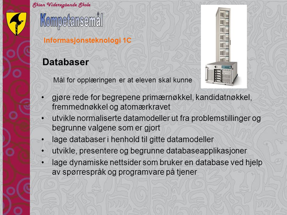 Kompetansemål Databaser
