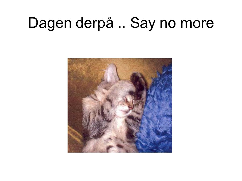 Dagen derpå .. Say no more