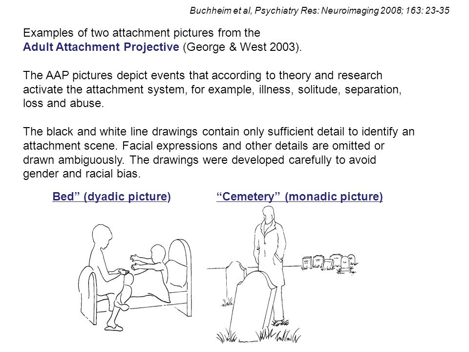 Examples of two attachment pictures from the