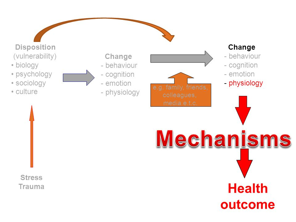 Mechanisms Health outcome Disposition (vulnerability) biology