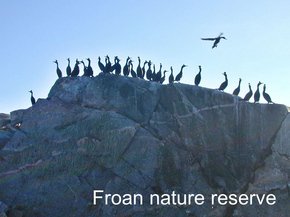 Froan nature reserve