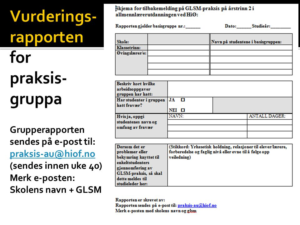 Vurderings- rapporten for praksis-gruppa